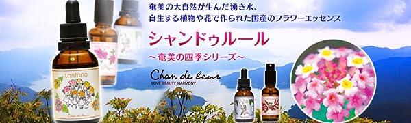シャンドゥルール 奄美大島の四季シリーズの紹介