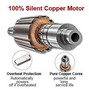 Silient and powerful motor of vibration plate