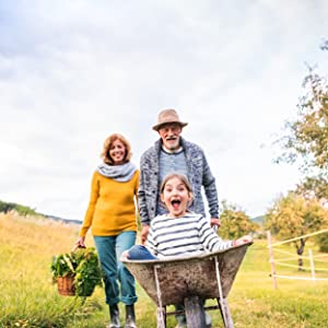 Grandpa pushing child in wheelbarrow