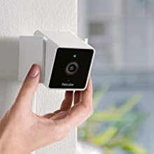 Pet camera wall mounting