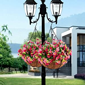Daisy Flowers in 12 inch Coconut Lining Hanging Baskets for The Decoration of Courtyard