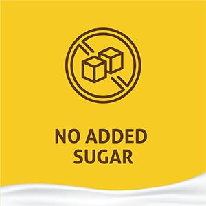 protein cereal muesli sugarless