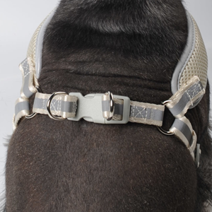 Lift the small dog harness and lock the buckle