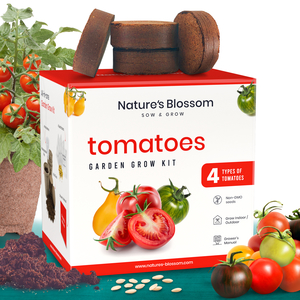 Tomato seed kit delicious tomato green zebra cherry tomato