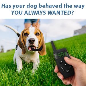 Dog Training Collar with Remote   Long Range 1600'