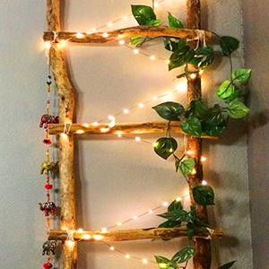plant decorating