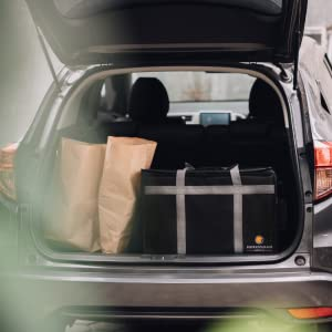 Trunk Car Groceries Grocery Shopping cold frozen trips costco Sam's Club Food Delivery Bag Insulated