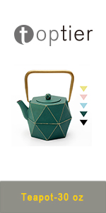 cast iron tea kettle tea pot with infuser for loose tea Japanese teapot cast iron kettle stove