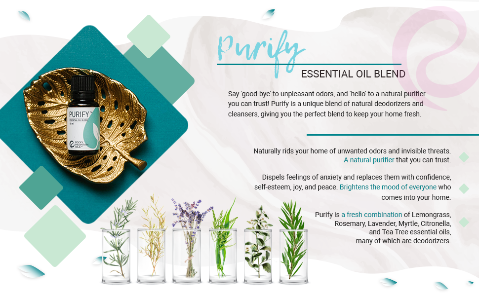 citronella oil essential oil blends lemongrass oil organic lavender essential oil oil for diffuser