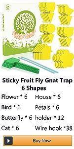 gnat traps for house plants live house plants fungus gnat traps insecticidal soap roach bait traps