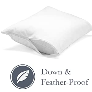down,feather,pillow,protector,white