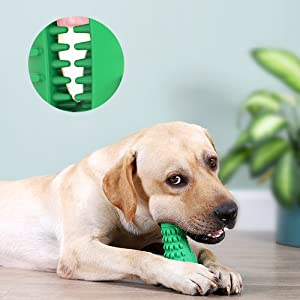 Dental Cleaning Toy