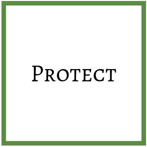 Bảo vệ