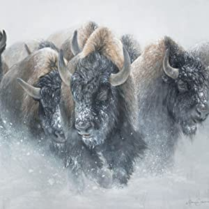 The Thundering Herd Web image