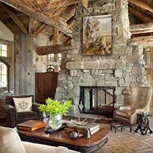 zoology lesson living room staging rustic home decor cabin western