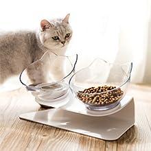 double cat bowl