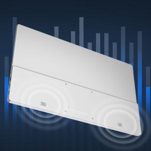Dual Stereo Speakers