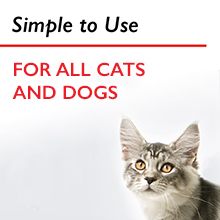 Non-Toxic Ear Wash for Dogs and Cats