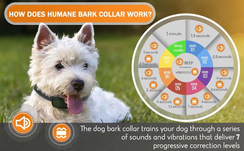 authen sport dog care petsafe nps chihuahua good Boy spray tiny dog rook refills remote masbrill