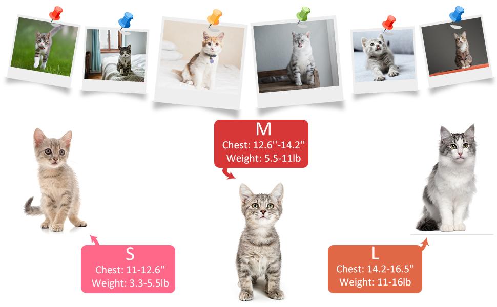 escape proof cat harness