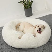 Thick Brim Support Dog Bed