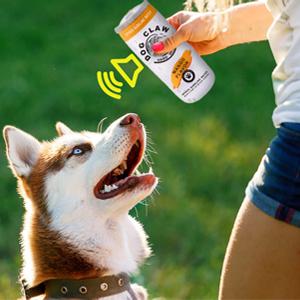 dog toy-4