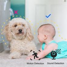 AI Powered Detection