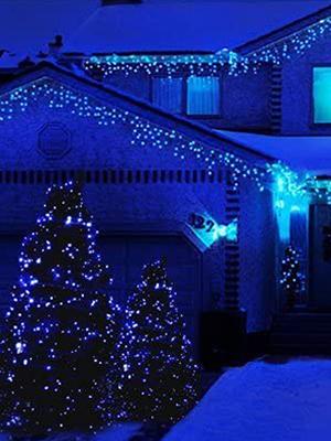 blue lights for trees