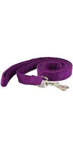 correa, púrpura, perro, cáñamo
