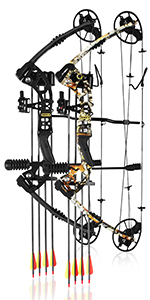 compound bow for archery and hunting