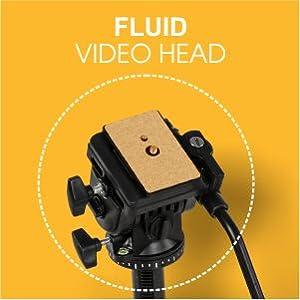 Fluid Tripod Head