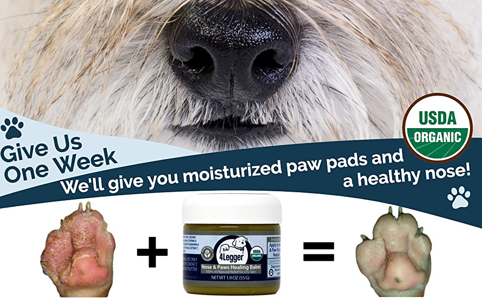 4-Legger healing paw balm for dry paws nose soother moisturize dry skin dog paw wax