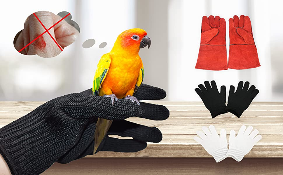 gloves glive dogs parrot handle pet glove birds training animal resistant anti impact working show