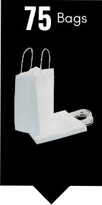 PI11020 white paper gift bags
