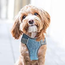 No Pull Dog Vest Harness