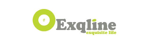 Exqline Set of 8 Domino Racks Holders Trays Organizer