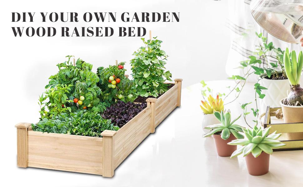 garden raised bed