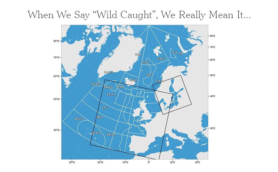 wild caught map