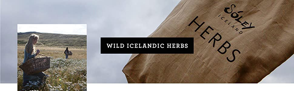 Soley Icelandic Herbs