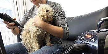 Secador de pieles para perros soplador de pelo profesional suministros para el cuidado de mascotas 8