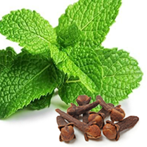 shave secret shave oil best shave ever all natural ingredients seed and nut base oils