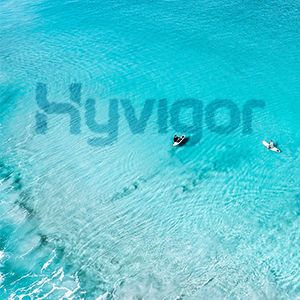 hyvigor
