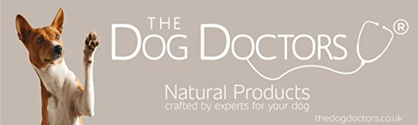 the dog doctors