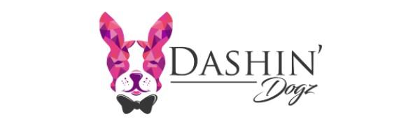 Dashin Dogz Designer Dog Collars and Leash Set