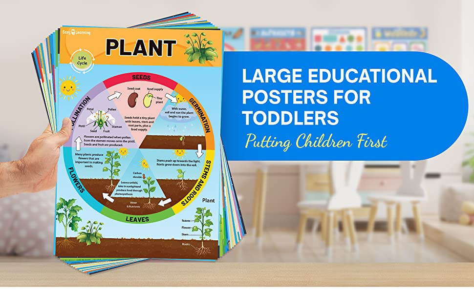 Large Educational Posters for Toddlers