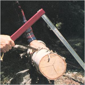 Sawing a birch log