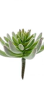Faux Flocked Succulent