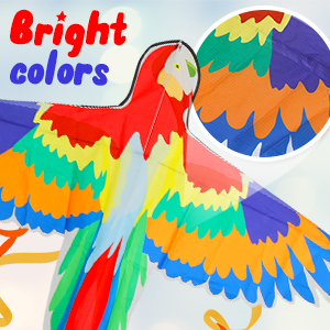 READY TO SHIP Rainbow Bird Wings Durable. Bright Color Parrot Phoenix