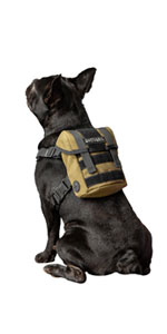 small puppy pup dog harness vest backpack