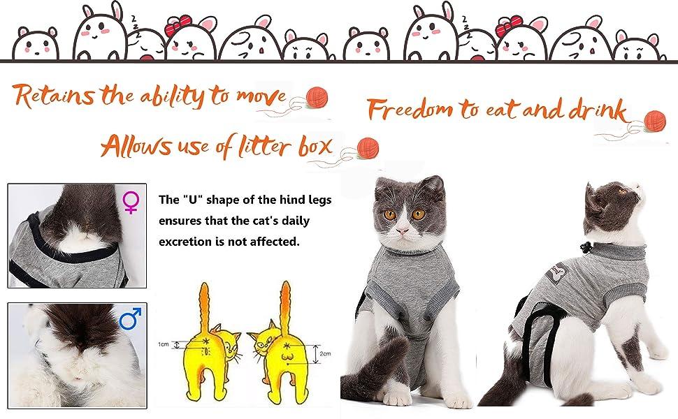 recovery small cats original spine smalls pink seam weight carpet camo shirt litter skin black
